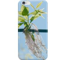 Sporting New Skirts in Spring iPhone Case/Skin