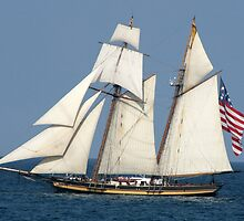 Pride of Baltimore II by Marija