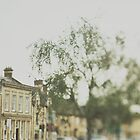 Picturesque Cotswolds  by Indea Vanmerllin