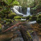 Horseshoe Falls by John Morton