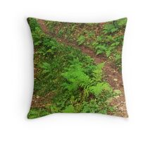 forest trail in the forest in the mountains Throw Pillow