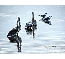 Wetland Reflections Photographic Print