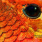 Eye of Hummingbird, Tongue of Newt by Bunny Clarke