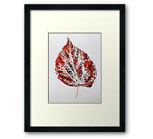Lime Leaf Print 3 Framed Print