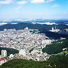 Seoul by rippledancer
