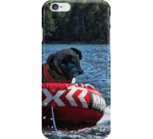 LETS HAVE A LITTLE EXCITEMENT HERE... CAN WE NOT GO A LITTLE BIT FASTER??  CANINE DOG PICTURE - CARD iPhone Case/Skin
