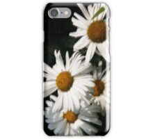 Daisies as i Phone Case iPhone Case/Skin