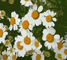 Daisies as iPhone Case by OlaG