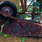 Old and Rusted, But Still Useful by Heather Friedman