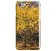 Beautiful autumn color iPhone Case/Skin