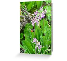 Busy Mountain Bee Greeting Card