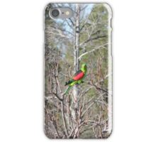 Red Winged Parrot iPhone Case/Skin