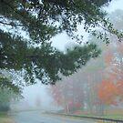 foggy early morning by ANNABEL   S. ALENTON