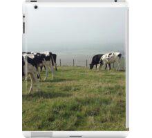 Pastures 2 iPad Case/Skin