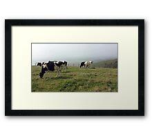 Pastures 2 Framed Print