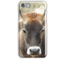 Honey the cow iPhone Case/Skin