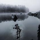 Serenity by SandraNightski