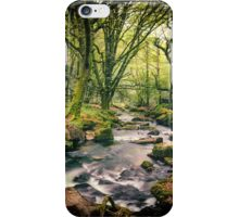 Golitha Falls iPhone Case/Skin