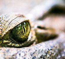 Sauron's Eye by Colin Cianelli