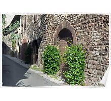 Stone buildings in Assisi with green plants Poster