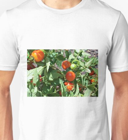 Tomatoes in the garden Unisex T-Shirt