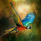 A Flash of Macaw by Tarrby