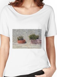 Cacti in flower pots Women's Relaxed Fit T-Shirt