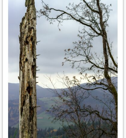 Old dead body of the tree in mountains, autumn landscape Sticker
