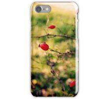 Autumn Beauties  iPhone Case/Skin