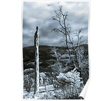 Bea Beautiful natural landscape in infrared view, Vosges mountains Poster