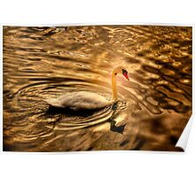Glowing Swan Poster