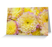 mums the word Greeting Card