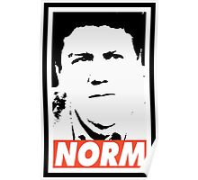 NORM Poster