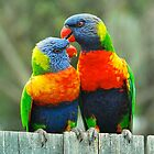 A Preening Pair by Penny Smith