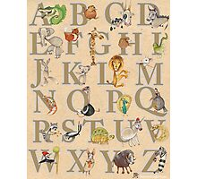 Animal ABCs Photographic Print