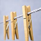 Pegs on the Line by Ellesscee