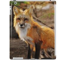 fox in the forest 2 iPad Case/Skin