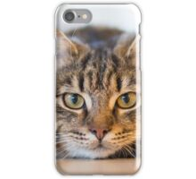 Cute Tom Cat iPhone Case/Skin
