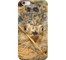 Sand Grouse Camouflage - Natural Beauty iPhone Case/Skin