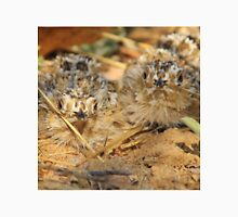 Sand Grouse Camouflage - Natural Beauty T-Shirt