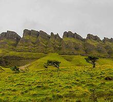 Benbulben Mountain, Sligo, Ireland - Detail by Mark Bangert