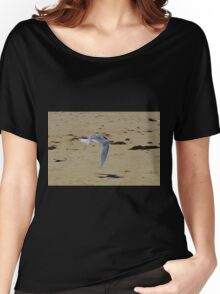 Greater Crested Tern (Thalasseus bergii) Women's Relaxed Fit T-Shirt