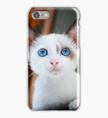 Cute Cat with Blue Eyes iPhone Case/Skin