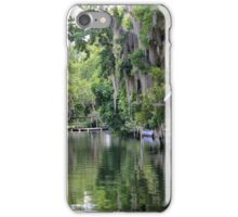 Hanging Willow over the Crystal River  iPhone Case/Skin