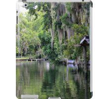 Hanging Willow over the Crystal River  iPad Case/Skin