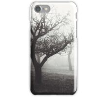 Misty Afternoon iPhone Case/Skin