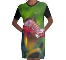 Red Day Lily in a Garden Graphic T-Shirt Dress