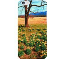 SPRING,CADES COVE iPhone Case/Skin
