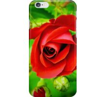 A Single Red Rose iPhone Case/Skin