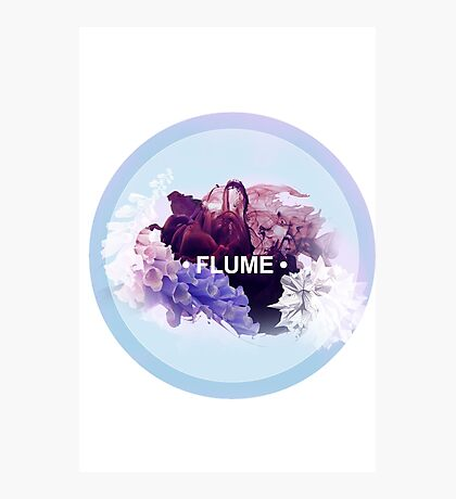 FLUME (2) Photographic Print